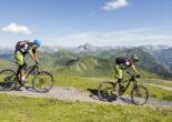 tour & trail